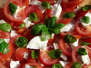 Top down photo of tomatoes, mozzarella, sweet basil